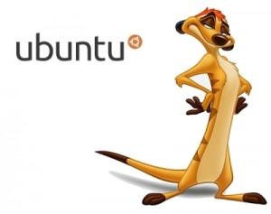ubuntu 10.10 Maverick Meerkat