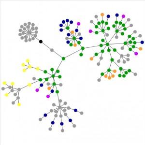 El gráfico de Suenyos.Com