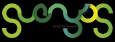 Diseño y Desarrollo de aplicaciones informáticas Suenyos.Com